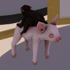 Baby Monkey Riding a Pig