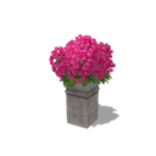 Acorn Meadows Apartment - Flowers - Pink