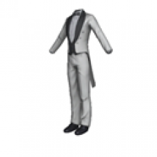 Audi White Formal Suit with Tails