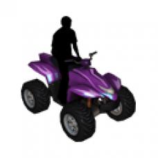 LMO - nDreams Quad Bike - Reward