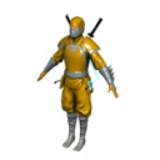 Golden Dragon Ninja Full Body Suit