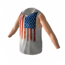 4th of July 2012 Vest (Male)