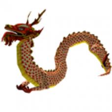 Chinese Dragon Companion