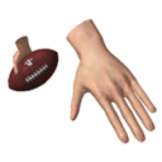 Football (Male)